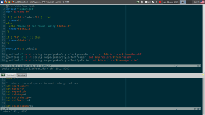 solarized vim in terminals