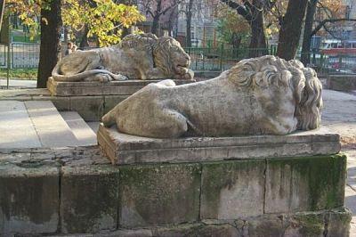 leopolis_lions